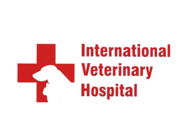 International Veterinary Hospital